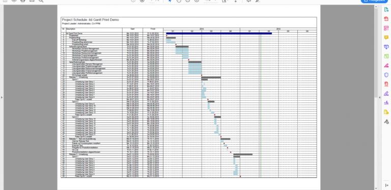 Ansicht Ihres Gantt Diagramms im Adobe Reader